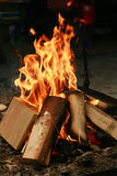 Fire. Burning wood - burning in the fire Grilling Royalty Free Stock Photography