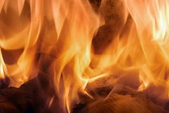 Fire. Pieces of paper burning in the fierce flames stock photo