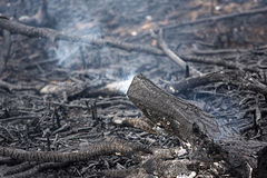 After fire Royalty Free Stock Photography
