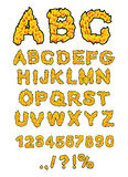 Fire ABC. Flame Alphabet. Fiery letters. Burning font. Hot typog Stock Photos