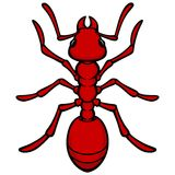 Fire Ant. A vector illustration of an Fire ant Royalty Free Stock Image