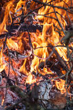 Fire as a concept of power Stock Photography
