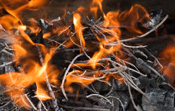 Fire and ashes. Burning fire and ash from the branches Royalty Free Stock Photos