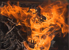 Fire and ashes. Burning fire and ash from the branches Royalty Free Stock Photo