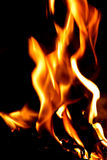 Fire Background Royalty Free Stock Images