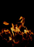 Fire Background. Beautiful Flame Background From A Real Fire stock images