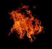 Fire background. Large flames of fire on black background Royalty Free Stock Images