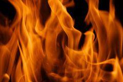 Fire background. Forks of flame on black background Royalty Free Stock Photos
