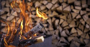 The fire on the background of firewood stock images