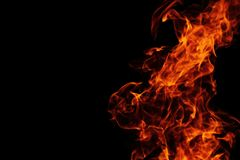 Fire background in the night Royalty Free Stock Photography