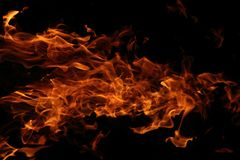 Fire background in the night. (on the black background Royalty Free Stock Photo