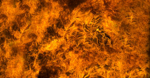 Fire background or texture Stock Images