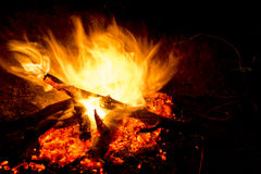 Fire. Barbecue fire heat, log, wood Stock Photos