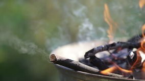 Fire in barbecues stock video footage