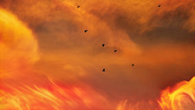 Fire barrier Stock Photography