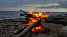 Fire on a beach at twilight stock footage