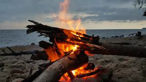 Fire on a beach at twilight. Fire on the beach at twilight stock video footage