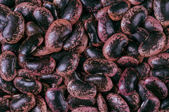 Fire-beans Stock Images