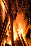 Fire. The beautiful fire in the camping royalty free stock images