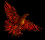 Fire bird - phoenix. Symbol of rebirth. Pencil drawing, sketch, made into flaming red tones on black Stock Photography