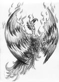 Fire bird - phoenix. Pencil drawn sketch of a legendary fire bird phoenix Stock Images