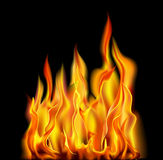Fire On A Black Background. Vector Illustration Stock Images