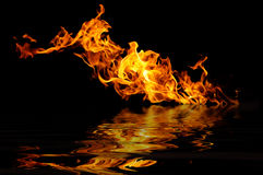 Fire on a black Stock Image