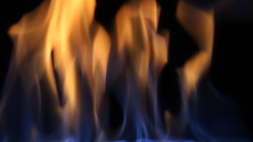 Fire on black background stock footage