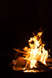 Fire on a black background Royalty Free Stock Images