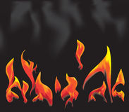 Fire on a black background Stock Image