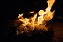 Fire on black background. Orange flame close up. Light in the night. Heat background. Bonfire in darkness. Fire on black background. Orange flame close up royalty free stock photos