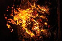 Fire on black background Stock Photo
