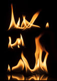 Fire on a black background Royalty Free Stock Image