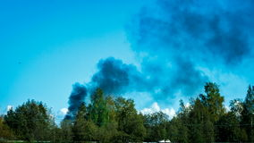 Fire, black smoke rises above the forest stock footage