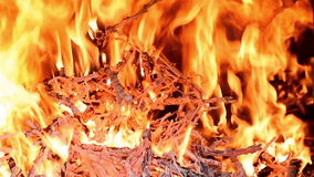 Fire blaze stock footage