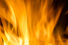 Fire blaze. Fire in fireplace. Fire background. Blazing Bonfire. Firewood burns in a fireplace. Fire blaze Royalty Free Stock Photography