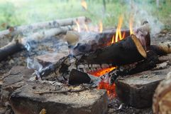 A campfire is burning. In the fire blazes orange wood a campfire is burning Royalty Free Stock Images