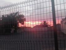 Fire Blazing sunset royalty free stock photo