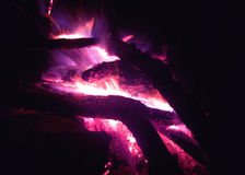 Fire bonfire Royalty Free Stock Photos