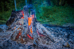 Fire. Bonfire night campfire background nature firewood fire red bright orange outdoor wood energy hot Stock Photos
