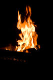Fire in brazier Stock Photography