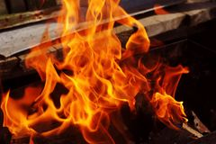 Fire brazier on nature bones fry meat vegetables cook stock image