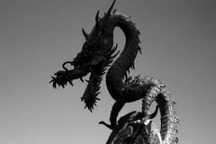 Fire breathing dragon Royalty Free Stock Image