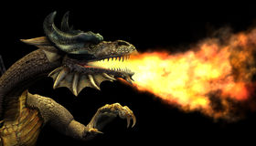 Free Fire Breathing Dragon Portrait Royalty Free Stock Image - 497036