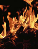 Fire Bright. Dancing flames of a bonfire, fire burning brightly Stock Photo