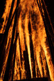 Fire and bright wooden coals Stock Photography
