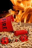 Fire bucket, matches and Flames Stock Photos