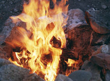 In the fire burn firewood Royalty Free Stock Image