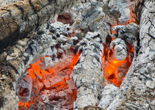 Fire and burned charcoal. Burned charcoal and ash from fire Royalty Free Stock Photography