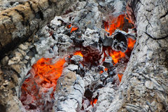 Fire and burned charcoal. Burned charcoal and ash from fire Stock Image